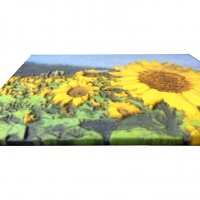 ComeTrue highlights Relief Sculpture 3D printing